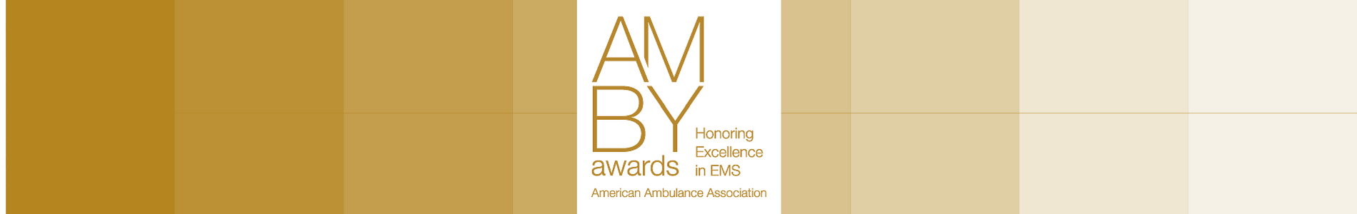 2016 Amby Best Public Relations Campaign Emsa Cpr Education